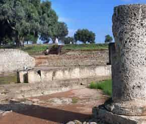 Archaeological Park of Sibari tour