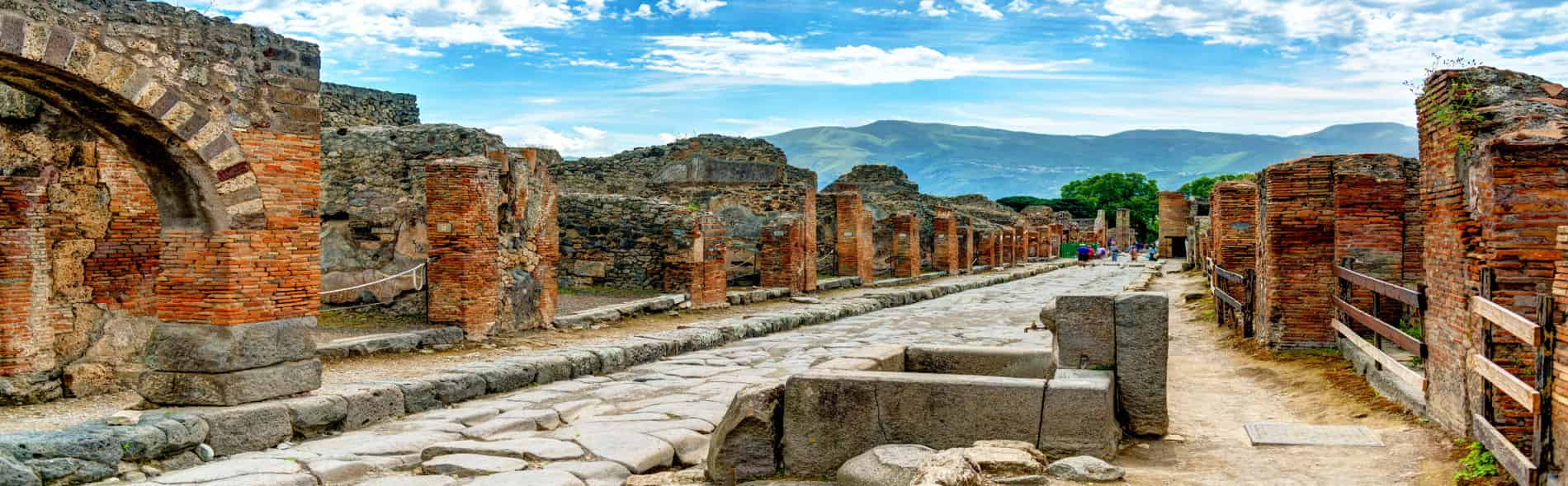 Walking Guided Tour of the Archaeological Excavations of Pompeii